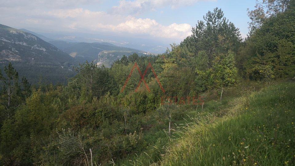 Land, 3892 m2, For Sale, Buzet