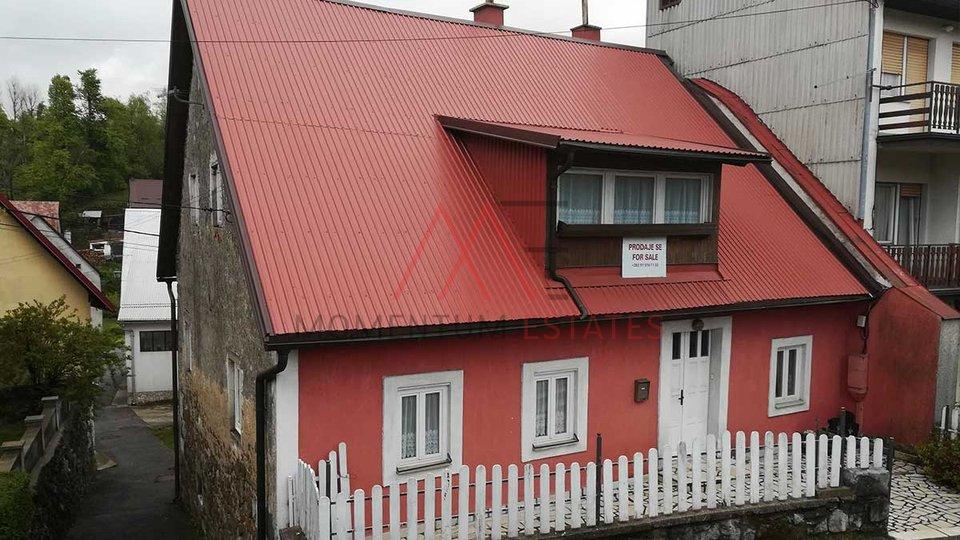 House in centre of Fužine